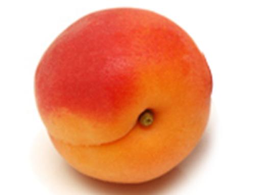 L'abricot, un véritable concentré de soleil