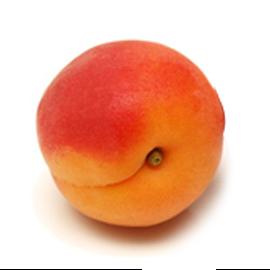 abricot fruit