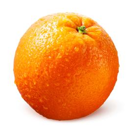 fruit orange maltaise