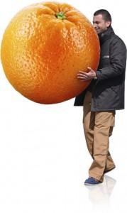 livraison corbeilles de fruits
