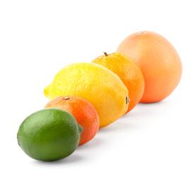 agrumes fruits