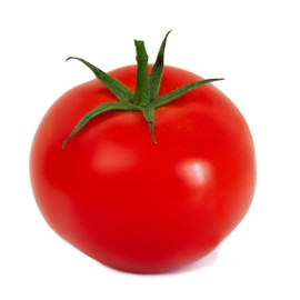 fruit tomate