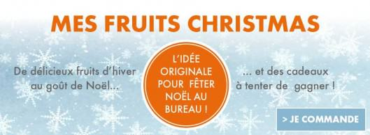 mes fruits christmas-panier de fruits noël