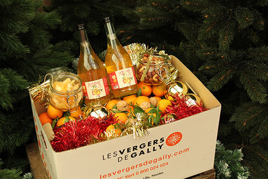 box fruitée mes fruits christmas
