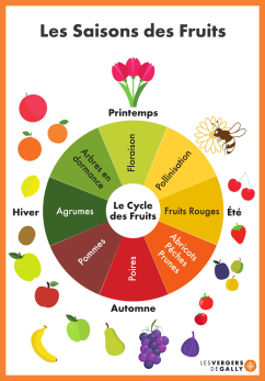 Les Saisons des Fruits - Calendrier2